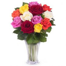 Sunshine: 12 multicolor roses